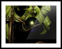 sofn-DD9E757F Picture Frame print