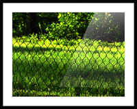 C (2) Picture Frame print