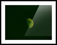 E (4) Picture Frame print