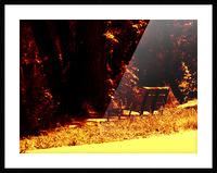 sofn-E4ED44CE Picture Frame print