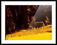 sofn-A43A391F Picture Frame print