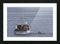 Lobster Fishing for a Living Picture Frame print