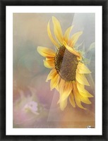 Be The Sunflower - Sunflower Art by Jordan Blackstone Picture Frame print