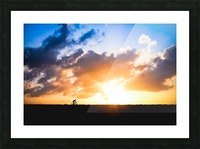 Sunset rider Picture Frame print