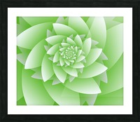 Greeny Floral Picture Frame print