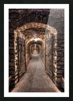 old tunnel Picture Frame print