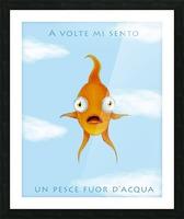 Goldfish Picture Frame print