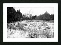 Quiet Winter Black And White Picture Frame print