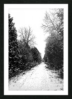 Winter Path Picture Frame print