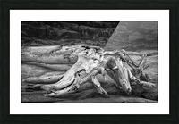 Run Aground - Echouer Picture Frame print