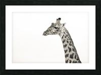 Stand Tall Picture Frame print
