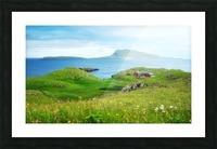 Faroe green field Picture Frame print