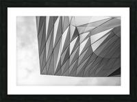 Musée des Confluences Picture Frame print