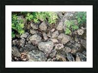 Roches Impression et Cadre photo