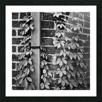 Winston Salem 79 Picture Frame print