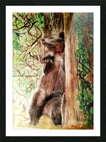 The Bear Facts Picture Frame print