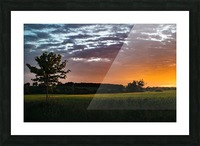 Morning Field Picture Frame print