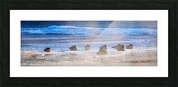 Canada Geese - APC-206 Picture Frame print