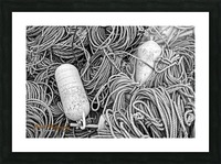 Rope & Buoys - AP 3733 Picture Frame print