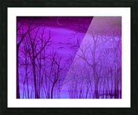 Forest Light Picture Frame print