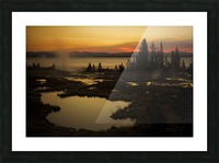 _S9A2665 Picture Frame print