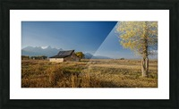 2S9A0909 Picture Frame print
