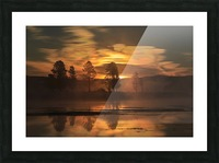 Northern Lights in Yellowstone Picture Frame print
