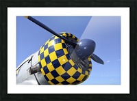 stk105465m Picture Frame print