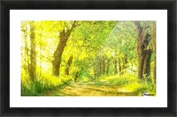 Walk in the Woods Picture Frame print