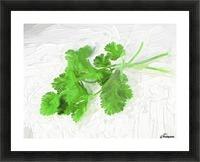 Cilantro Picture Frame print