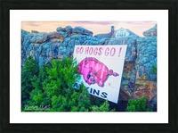 Atkins AR | Go Hogs Go Picture Frame print