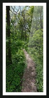 trail Picture Frame print