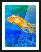 Undersea Journey Picture Frame print