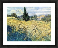 Green wheat field with cypress by Van Gogh Picture Frame print