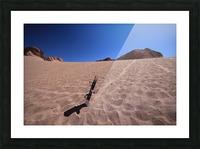 Sandboard Picture Frame print