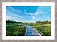 A walk at the Bog Picture Frame print