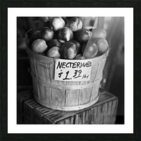 Necterines Picture Frame print
