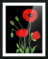 Red Poppy Flowers Watercolor Picture Frame print