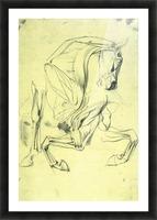 Horse study by Franz von Stuck Picture Frame print
