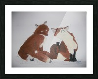 Red Fox pair Picture Frame print