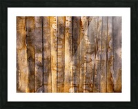 Forest 01 - Abstract Photo for Sale Impression et Cadre photo