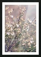 Wild Grass Picture Frame print