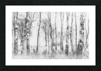 Black and white Picture Frame print