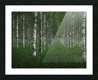 The tunnel Picture Frame print