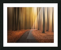 Path to unknown Picture Frame print