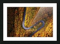 Serpentine column Picture Frame print