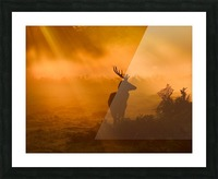 Guard Of Light Picture Frame print