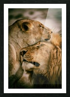 What is love Picture Frame print