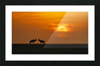 At The Sunset Picture Frame print