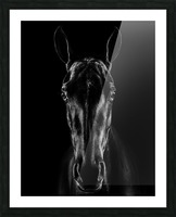 The Horse in Noir Picture Frame print